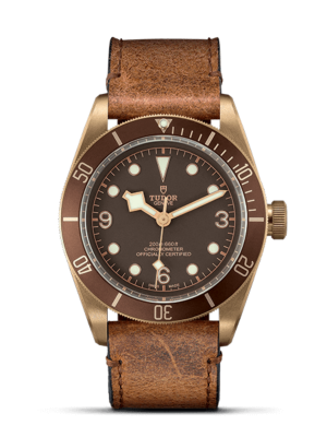 Montre Tudor Black Bay Bronze M79250BM-0005