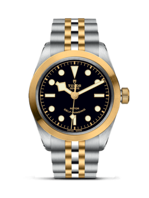 Montre Tudor Black Bay 36 S&G M79503-0001