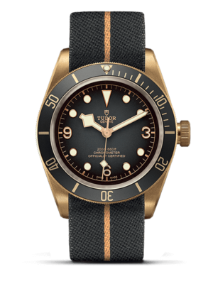 Montre Tudor Black Bay Bronze M79250BA-0002