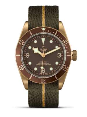 Montre Tudor Black Bay Bronze M79250BM-0004