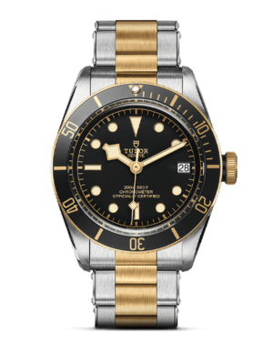 Montre Tudor Black Bay 41 S&G M79733N-0008