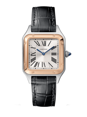 Cartier Santos-Dumont Small W2SA0012 Watch